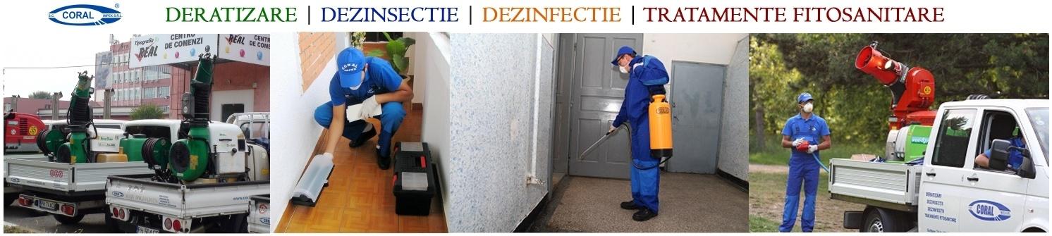 Servicii Deratizare Dezinsectie Dezinfectie Slatina