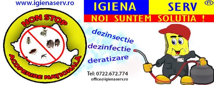 Servicii Deratizare Dezinsectie Dezinfectie Aiud